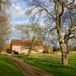 Homepage - Bardfield Vineyard 0192